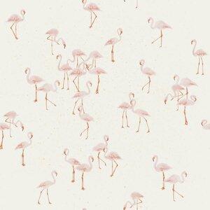 Flamingos - tricot