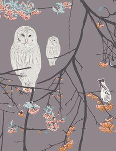 Bird Songs sun - tricot