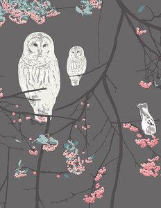 Bird Songs moon
