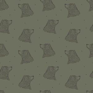 Curious Bear dusty green - sweat